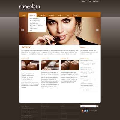 Screenshot of a webpage using a dark colored template.